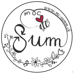 mc-summ.ch